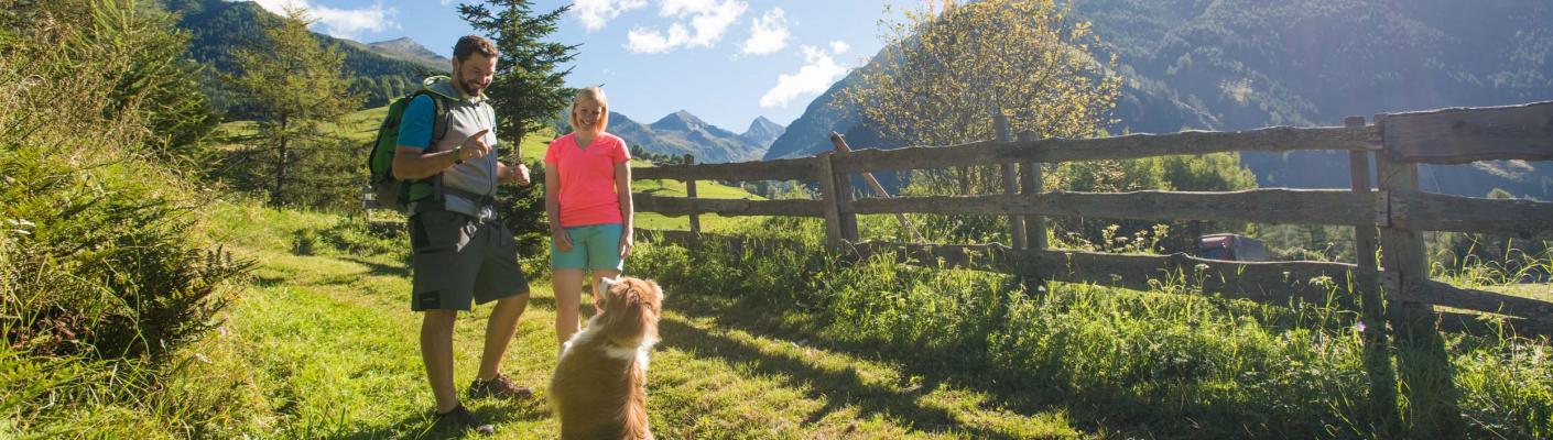 Holidays with dogs | Eggerhof Mallnitz